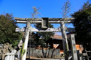 鎧神社正月の西側鳥居の写真素材 [FYI03301083]