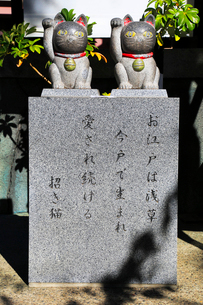 今戸神社境内招き猫の像の写真素材 [FYI03301090]