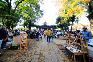 雑司ヶ谷鬼子母神堂フリ-マ-ケットの写真素材 [FYI03301100]