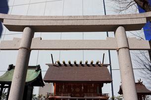 成子天神社境内の天照大神日本祖社の写真素材 [FYI03301153]