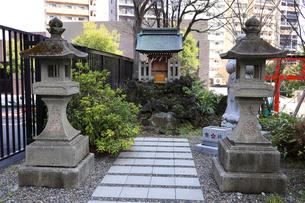 成子天神社北参道脇の浅間神社の写真素材 [FYI03301185]