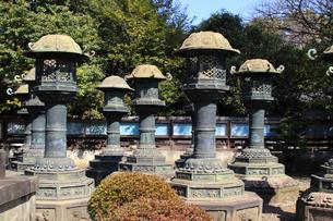 上野東照宮銅製の灯篭の写真素材 [FYI03301203]
