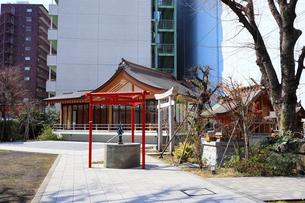 成子天神社水神宮と神楽殿の写真素材 [FYI03301225]