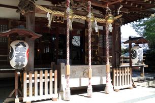 三鷹八幡大神社 拝殿の注連縄と鈴と提灯の写真素材 [FYI03301277]