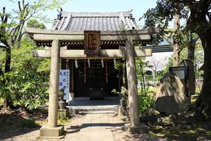 三囲神社 境内 大黒天 恵比寿天の写真素材 [FYI03301282]