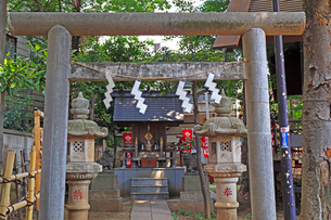 高円寺氷川神社摂社の気象神社の写真素材 [FYI03301312]