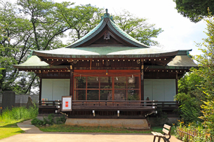 鷺宮八幡神社神楽殿の写真素材 [FYI03301341]
