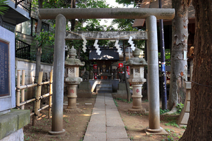 高円寺氷川神社摂社の気象神社の写真素材 [FYI03301353]