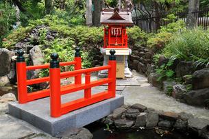 新宿十二社熊野神社弁天池に架かる神橋の写真素材 [FYI03301390]
