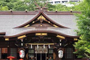 新宿十二社熊野神社拝殿の写真素材 [FYI03301392]