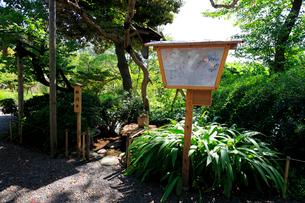 向島百花園、俳句をイメージした井戸の写真素材 [FYI03301660]