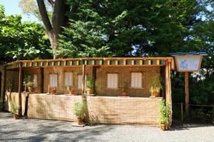 向島百花園、俳句をイメージした鉢の写真素材 [FYI03301685]