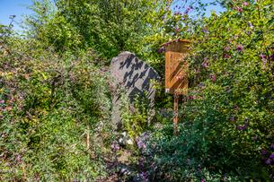 向島百花園、俳句の碑の写真素材 [FYI03301725]