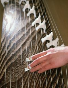 琴を弾く手の写真素材 [FYI03303079]