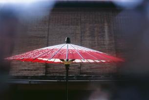 夏の祇園 日傘の写真素材 [FYI03303185]
