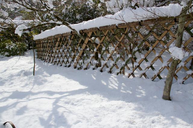 雪の光悦垣の写真素材 [FYI03303606]