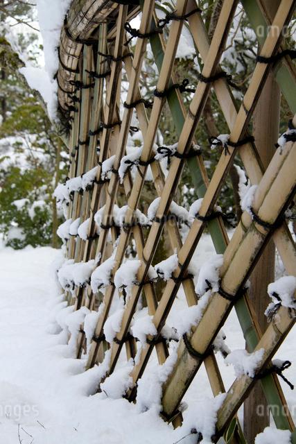 雪の光悦垣の写真素材 [FYI03303607]