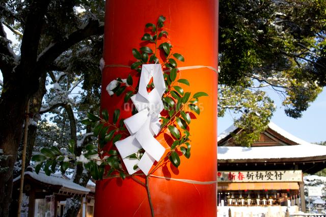 正月飾り 御幣の写真素材 [FYI03303618]