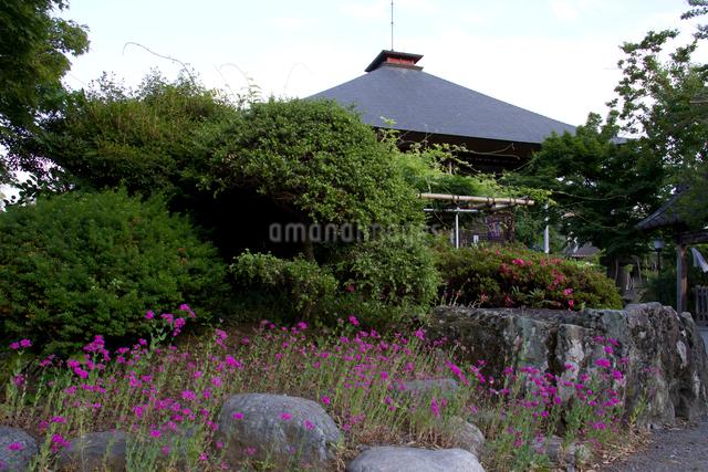 秩父三十四ヵ所 第二十二番童子堂と草花の写真素材 [FYI03303677]