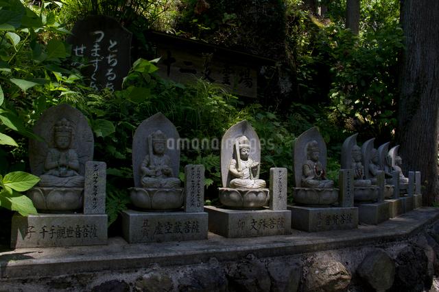 秩父三十四ヵ所 第三十一番 観音院の石段に並ぶ石仏の写真素材 [FYI03303717]