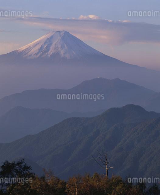 雁ヶ腹摺山からの富士山の写真素材 [FYI03303760]