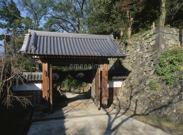 延岡城跡大手門の写真素材 [FYI03303812]