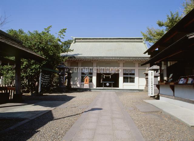 南洲神社の写真素材 [FYI03303821]