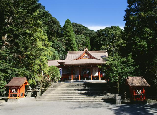 豊玉姫神社の写真素材 [FYI03303831]