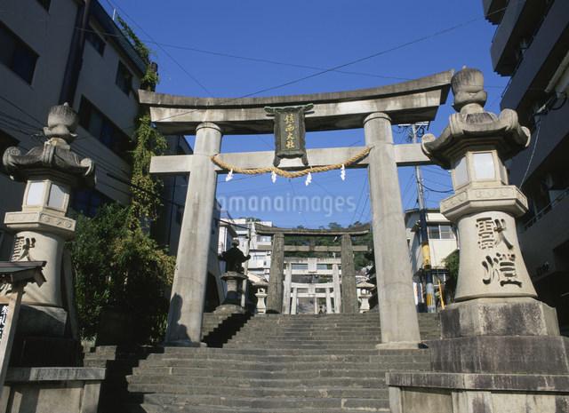 諏訪神社の鳥居の写真素材 [FYI03303861]