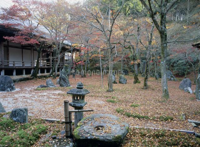 光明禅寺 一滴海の庭の写真素材 [FYI03303911]
