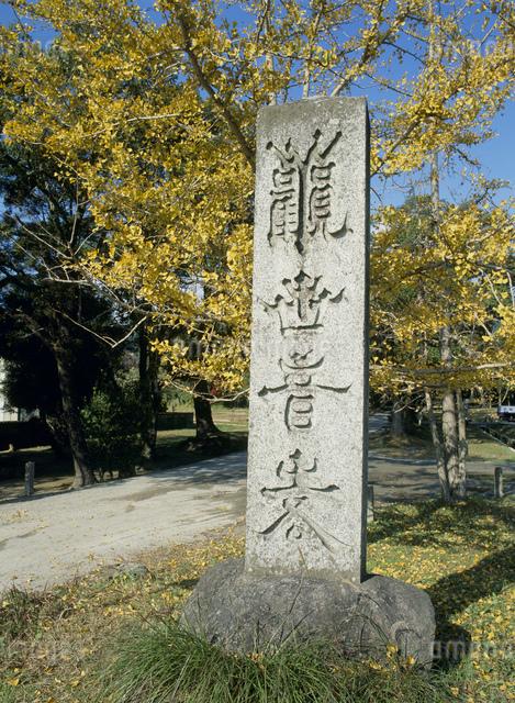 観世音寺 石柱の写真素材 [FYI03303918]