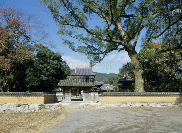 戒壇院 観世音寺の写真素材 [FYI03303919]
