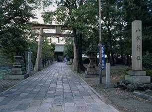 八坂神社の写真素材 [FYI03303928]