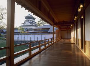 小倉城庭園から小倉城の写真素材 [FYI03303932]