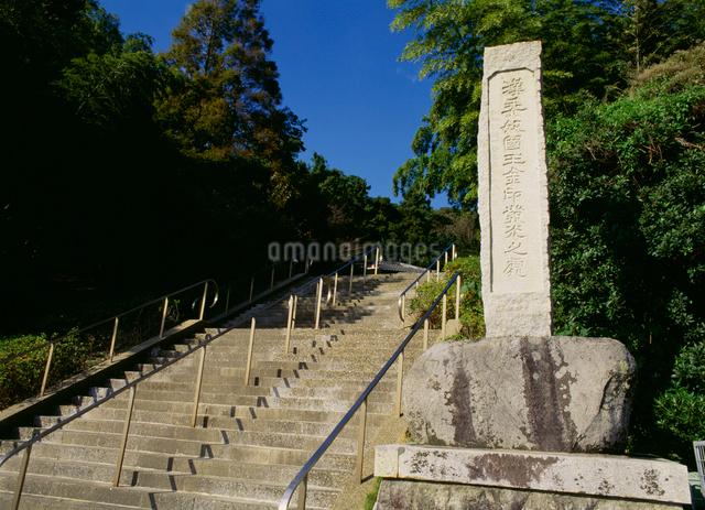 金印公園の写真素材 [FYI03303939]