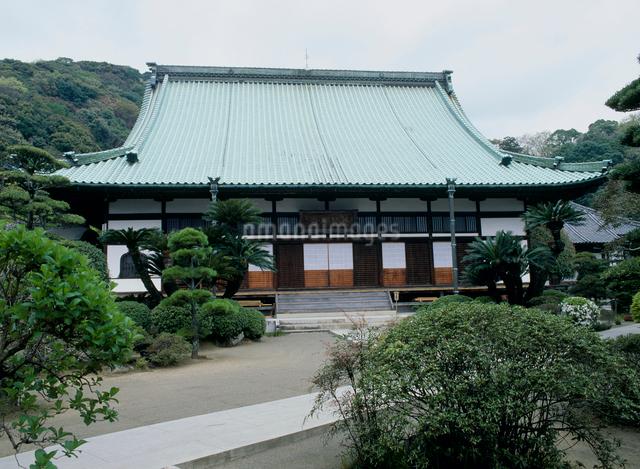 養賢禅寺の写真素材 [FYI03304082]