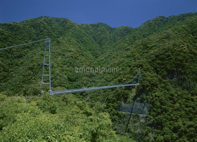 綾の照葉大吊橋の写真素材 [FYI03304098]