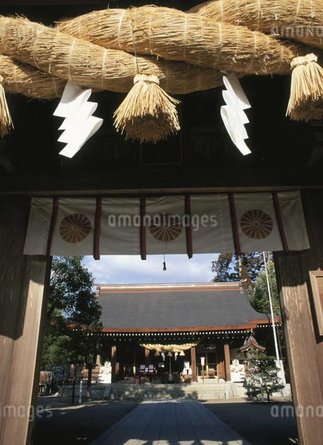 菊池神社の写真素材 [FYI03304124]