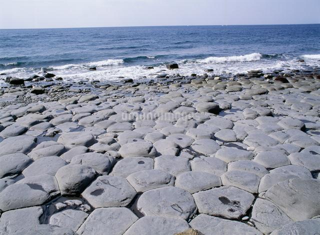 生月島の海岸の写真素材 [FYI03304142]