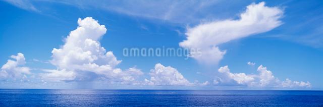 海と夏雲の写真素材 [FYI03304204]