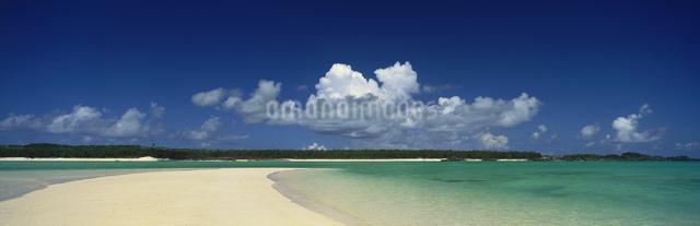 百合ヶ浜の写真素材 [FYI03304208]