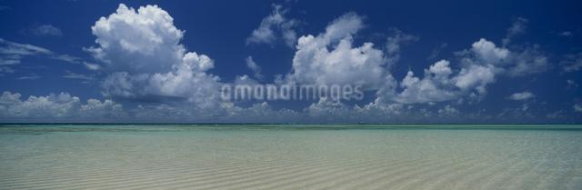 百合ヶ浜の写真素材 [FYI03304217]