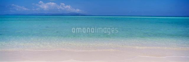 コンドイビーチの写真素材 [FYI03304219]