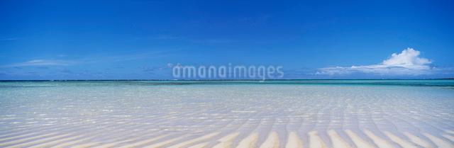 百合ヶ浜の写真素材 [FYI03304222]