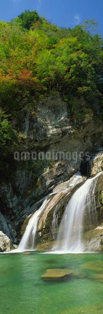 アメガエリの滝の写真素材 [FYI03304226]