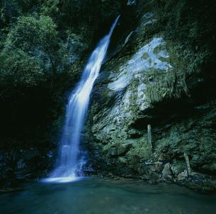 琵琶の滝の写真素材 [FYI03304277]