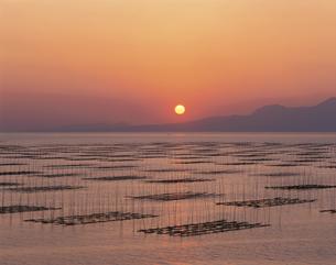 有明海のりひび夕景 熊本市1月の写真素材 [FYI03304592]