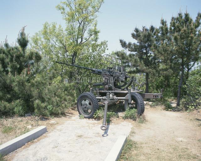 203高地の高射砲の写真素材 [FYI03305528]