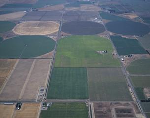 潅漑農法の畑 コロンビア盆地 ワシントン州 アメリカの写真素材 [FYI03305792]