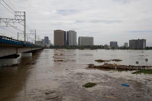 台風で増水した多摩川の写真素材 [FYI03306004]